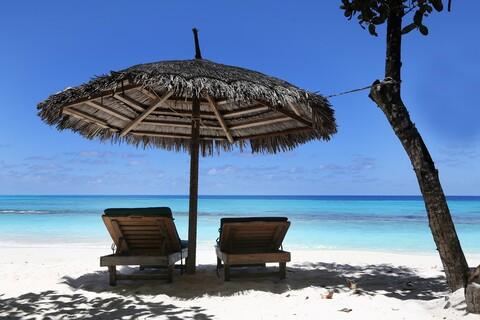 Zwei Sonnenliegen am Strand unter Palmen - Urlaubszeit.